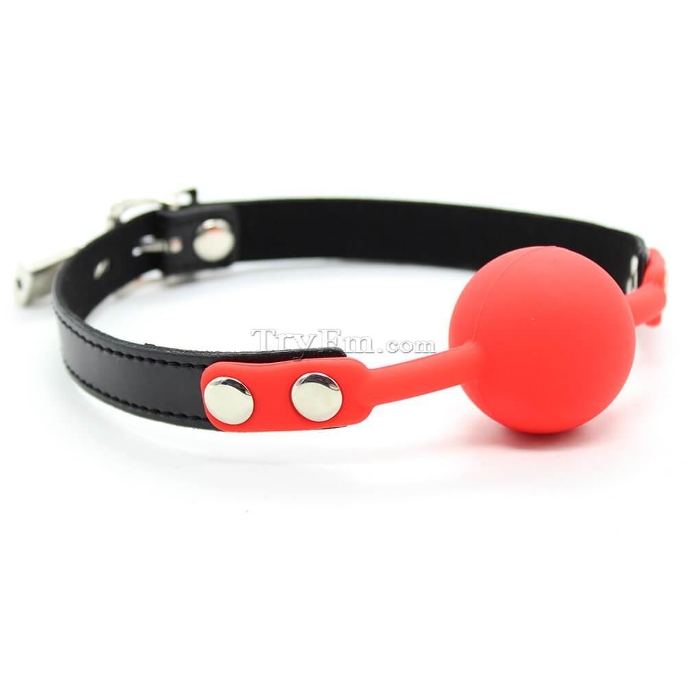 3-Silicone-Comfort-Ball-Gag-2.jpg