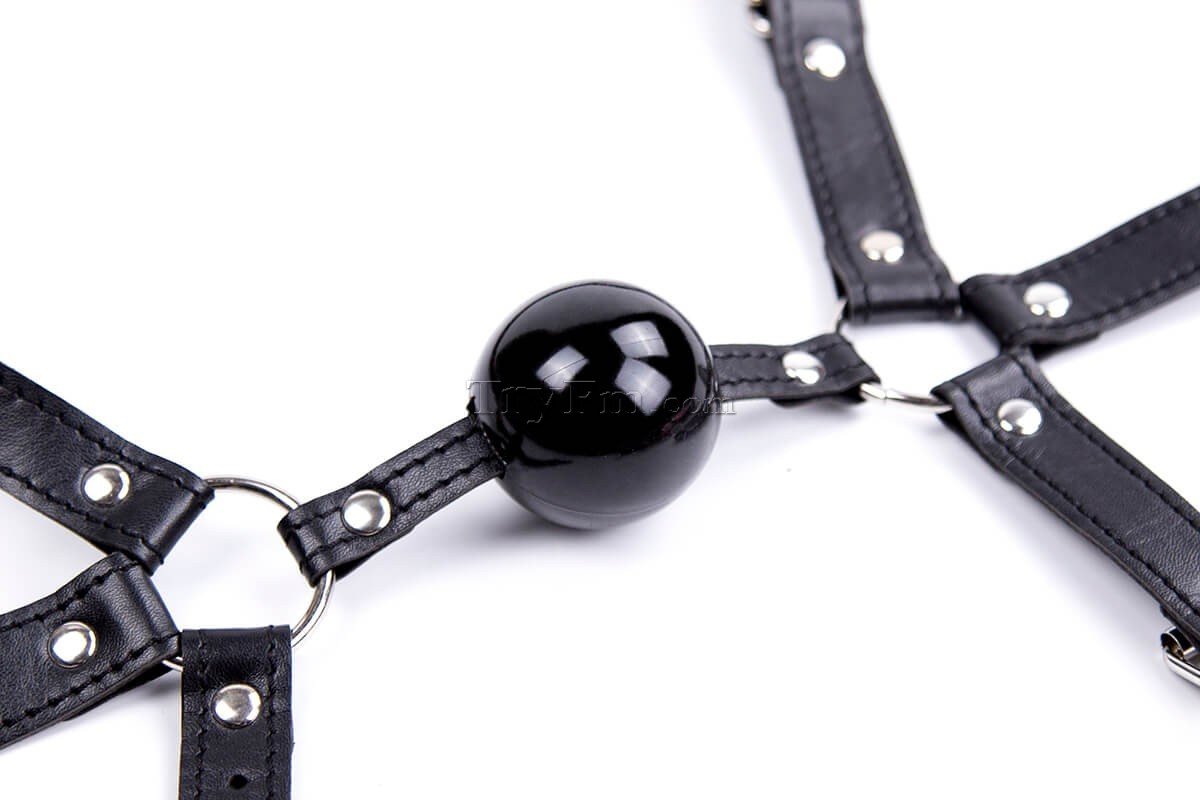 12-Simple-Harness-Ball-Gag-black-3.jpg