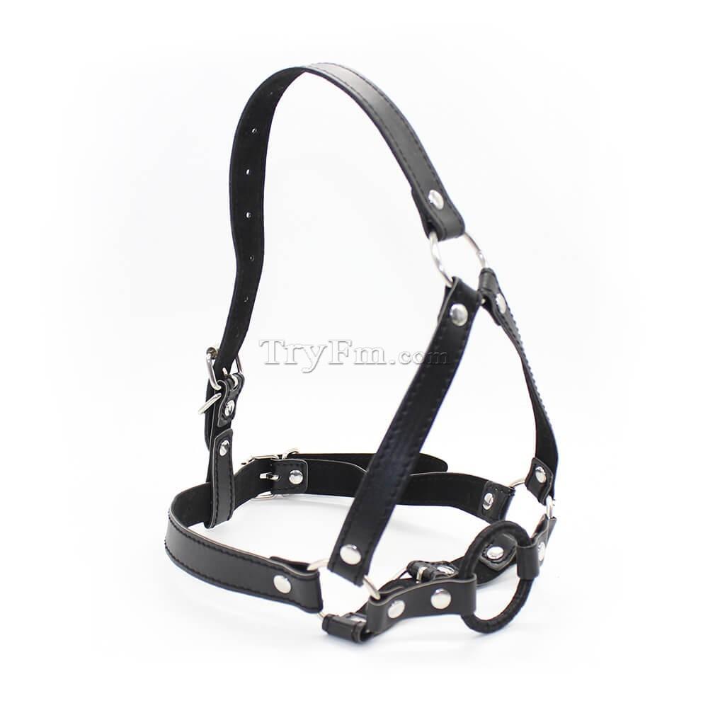 14-Harness-Ring-Gag-red-black.jpg