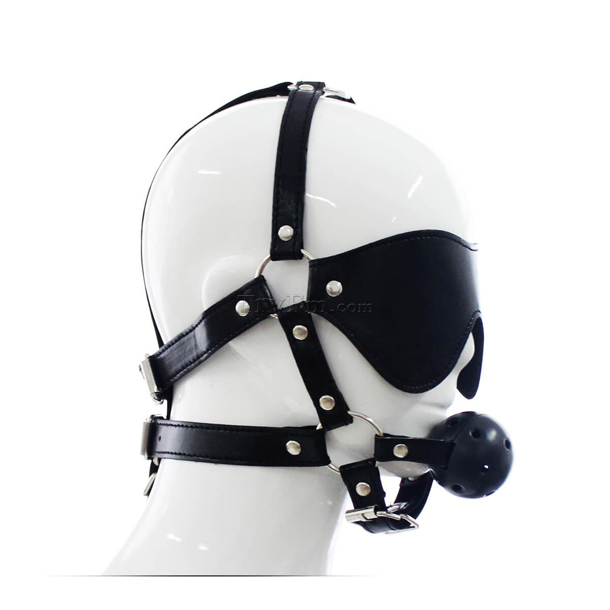 24-Blindfold-Harness-and-Ball-Gag-1.jpg