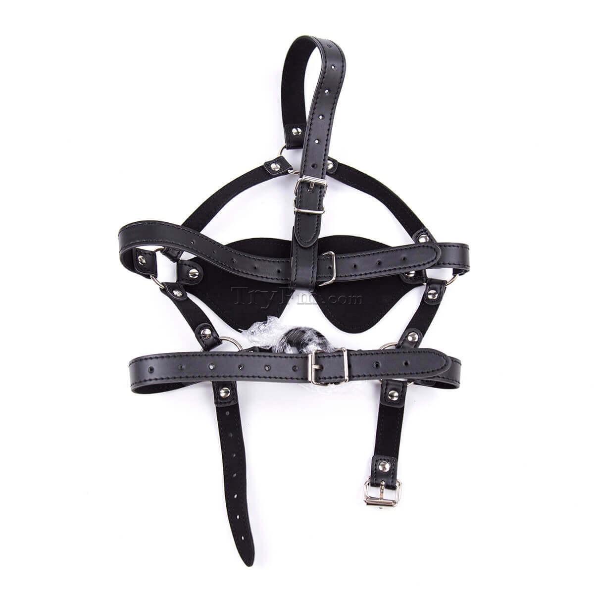 24-Blindfold-Harness-and-Ball-Gag-10.jpg