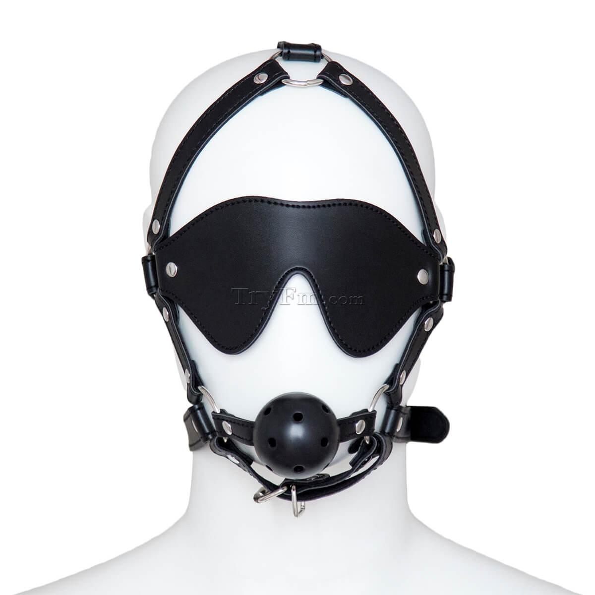 24-Blindfold-Harness-and-Ball-Gag-2.jpg