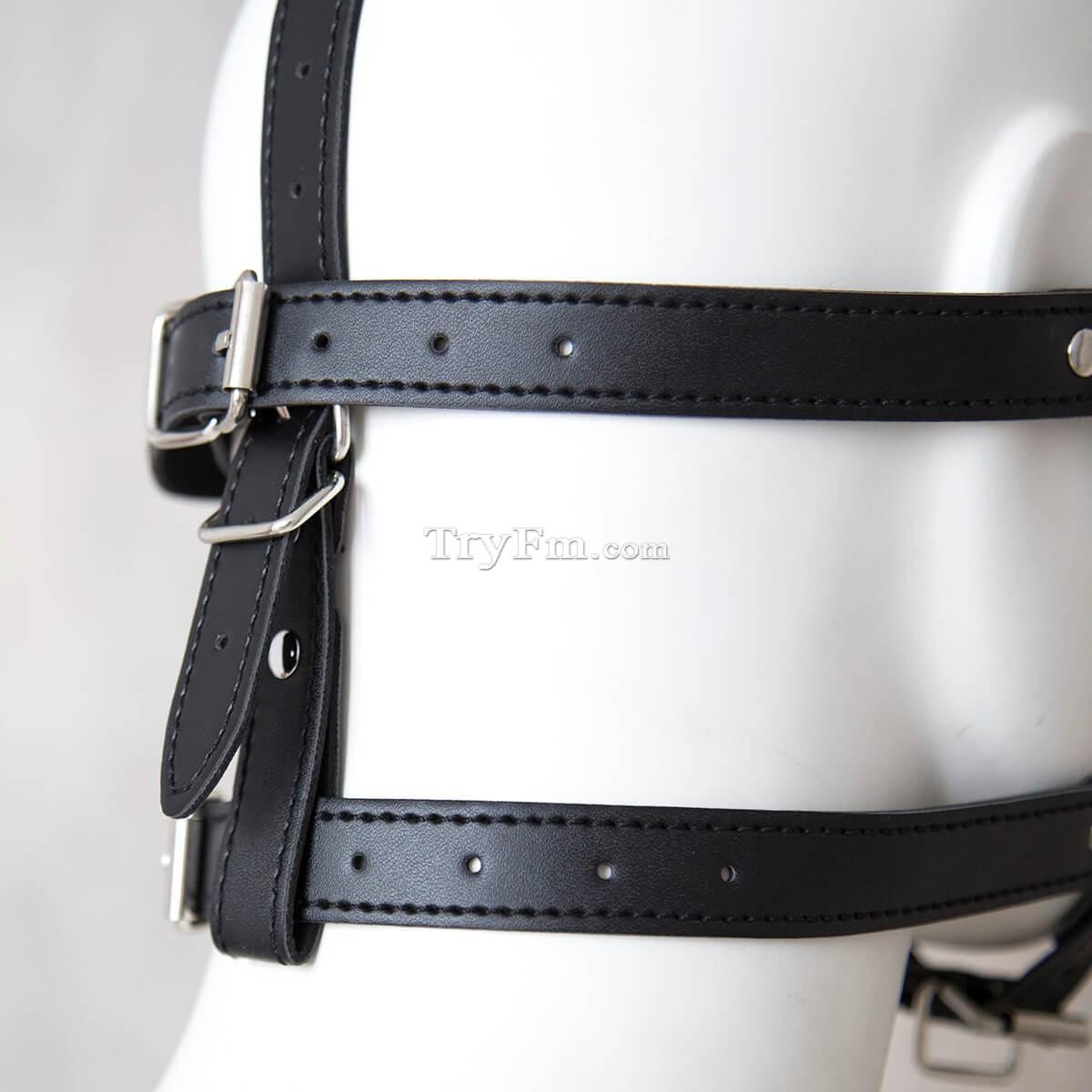 24-Blindfold-Harness-and-Ball-Gag-5.jpg