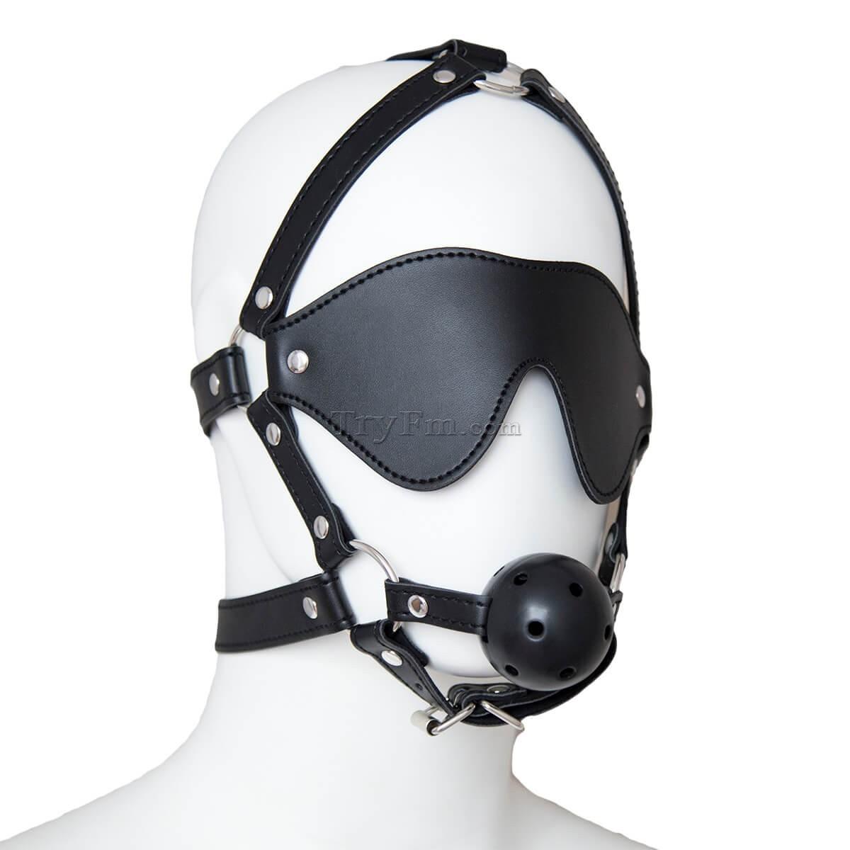 24-Blindfold-Harness-and-Ball-Gag-6.jpg