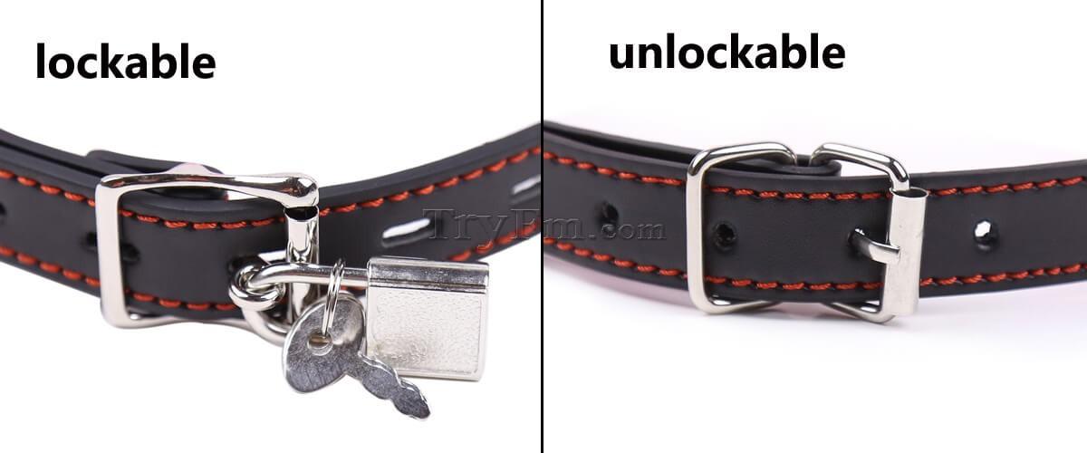 32-Gimme-a-Bone-lock.jpg