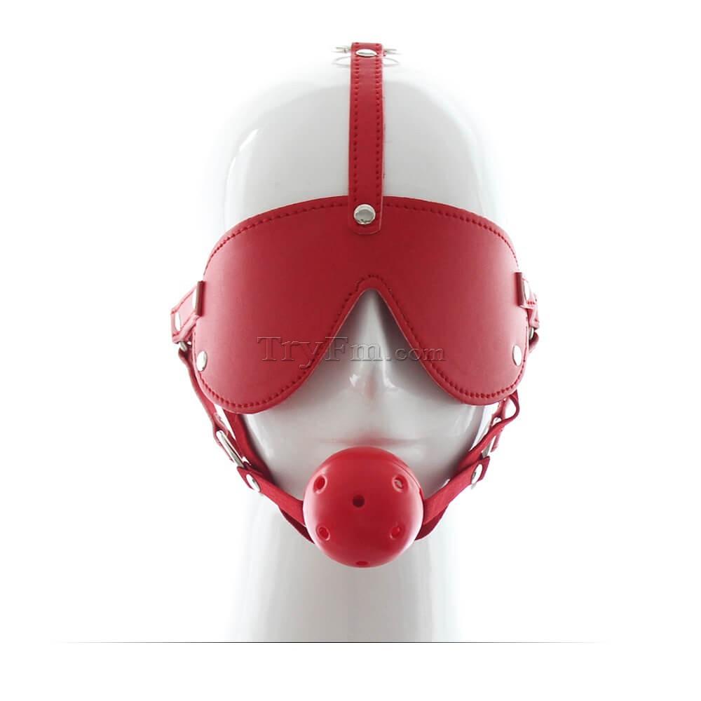 33-Easy-Blindfold-Harness-Ball-Gag6.jpg