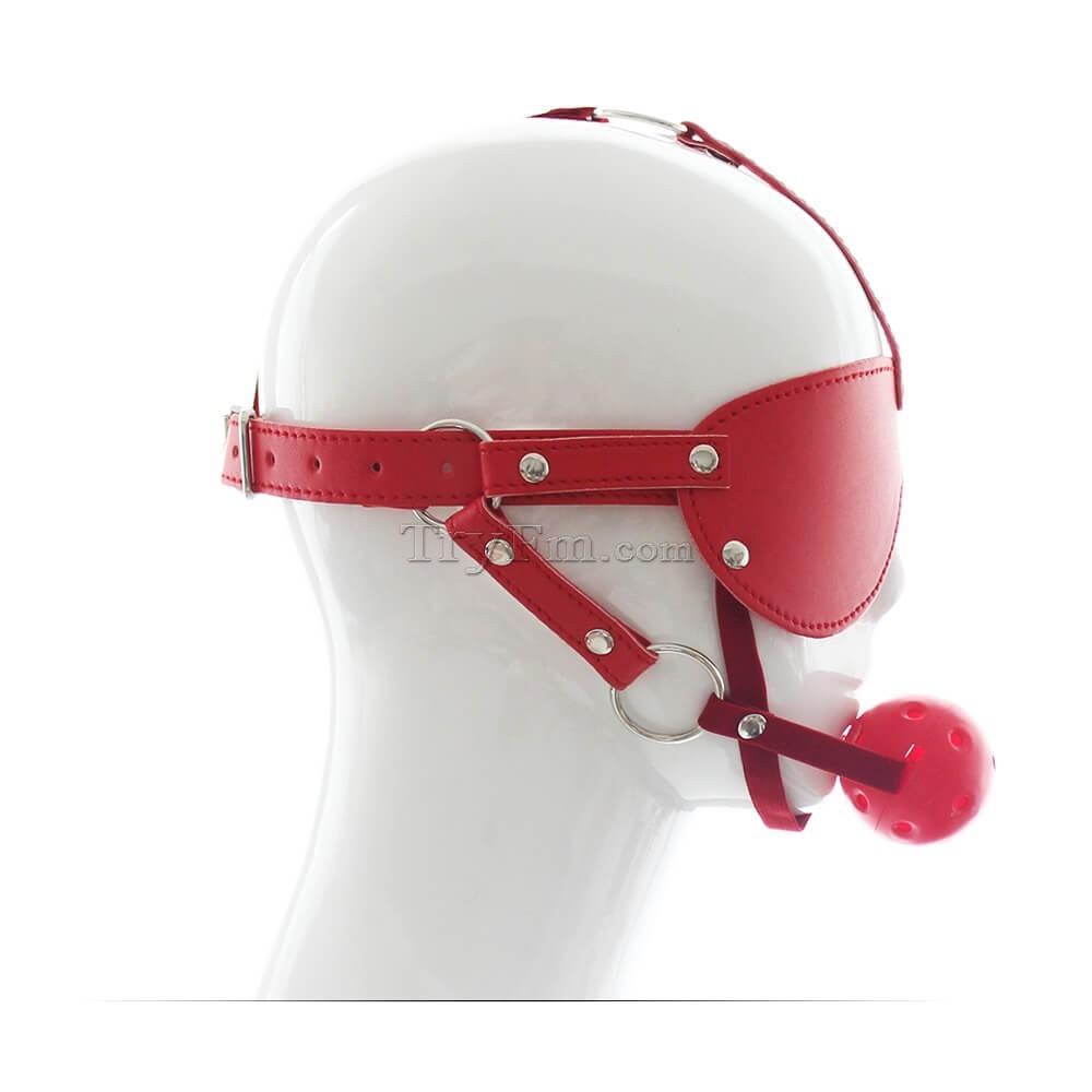 33-Easy-Blindfold-Harness-Ball-Gag7.jpg
