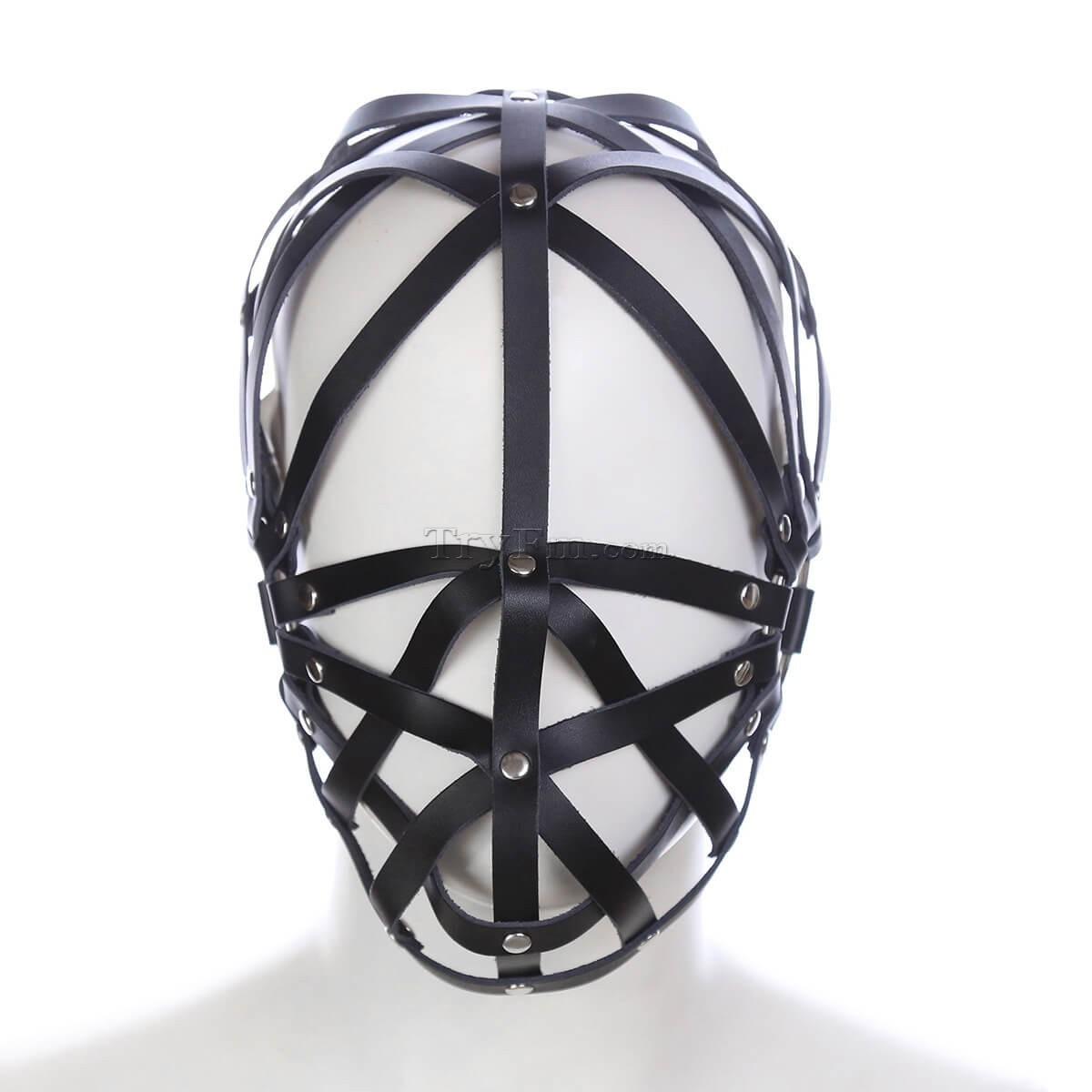 4-Head-Cage6.jpg