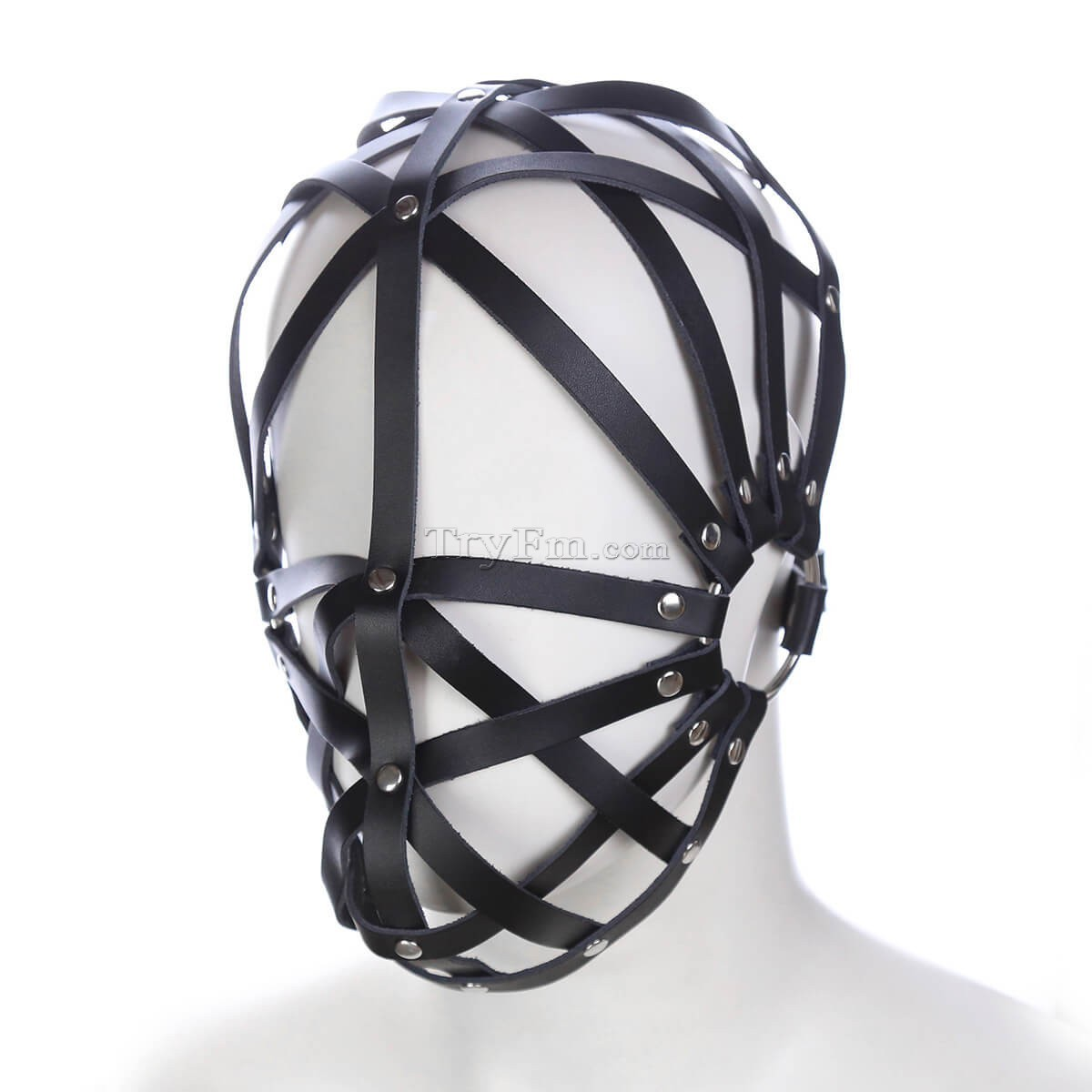 4-Head-Cage8.jpg