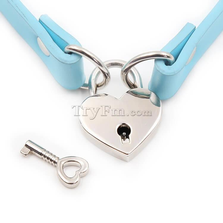 2-blue-neck-collar-with-lock60.jpg