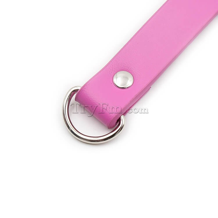 2-pink-neck-collar-with-lock50.jpg