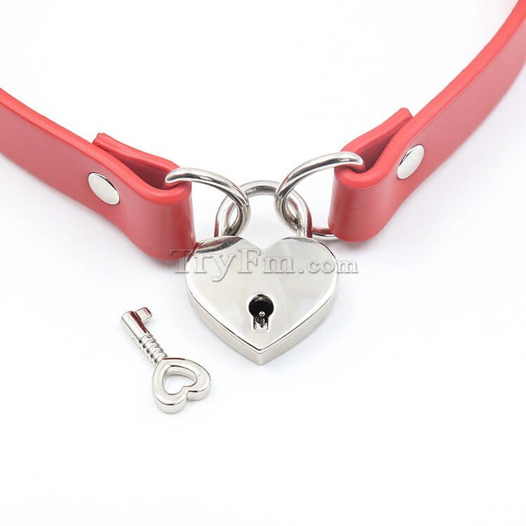 2-red-neck-collar-with-lock60.jpg