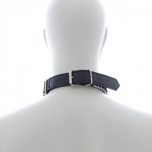 8-sex-slave-collar8.jpg